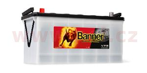 100Ah battery, 600A, left BANNER Buffalo Bull 413x175x195(220)