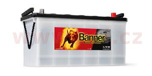 100Ah battery, 600A, right BANNER Buffalo Bull 413x175x195(220)